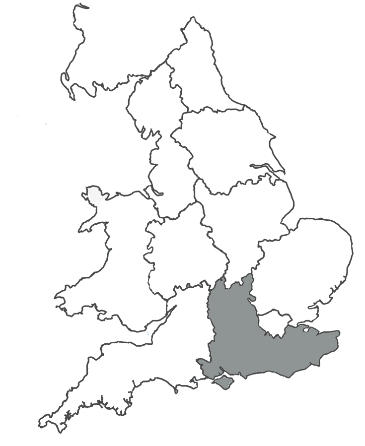 Local Services 24 Hour - South East